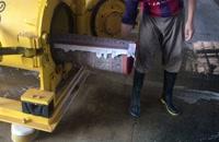 مرحله چهارم قالیشویی فرش ها آبگیری شده است