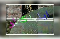 انواع فیلم هیدروگرافیک اورجینال 09195642293 ایلیاکالر