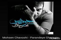 ترانه پرنده غمگین محسن چاوشی