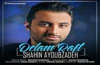 Shahin Ayoubzadeh Delam Raft