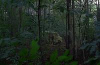 قسمت 12 فصل هفتم سریال The Walking Dead