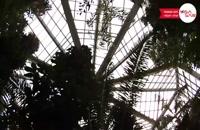 پالمن گارتن آلمان - Palmen Garten Germany - تعیین وقت سفارت آلمان با ویزاسیر