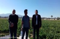 مصاحبه با تعدادی از کشاورزان دررابطه با استفاده از محصولات فرتی نرس
