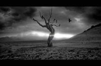 دانلود موزیک ویدئو جدید مسیح و آرش AP به نام دریا