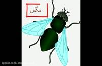 از بین بردن حشرات موذی | آریاسم