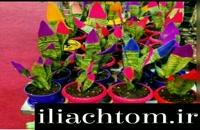ایلیاکروم تولید کننده دستگاه مخمل پاش 09127692842