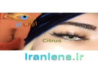 لنز رنگی سبز سیتروس فصلی کد O606