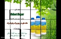 علف کش قوی برای علف های هرز مزارع دانه های روغنی | Select Super