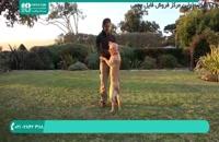 طریقه تربیت سگ از 0 تا 100