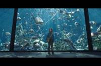دانلود زیرنویس فارسی فیلم Aquaman
