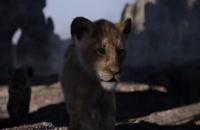 انیمیشن lion king (دانلود انیمیشن)