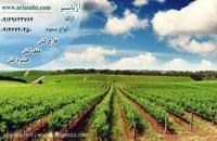 Escolta | اسکولتا | قارچ کش حرفه ای و خارجی برای مزارع چغندر قند