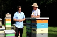 072029 - زنبورداری سری اول