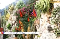 باغ عجایب موناکو، باغی شگفت انگیز در فرانسه - بوکینگ پرشیا