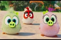 دانلود انیمیشن Angry Birds 2 2019 لینک دانلود در توضیحات