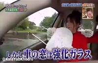 کاربرد مهمّ پشت سری صندلی خودرو.