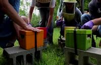 072039 - زنبورداری سری اول