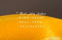 دستگاه مخمل پاش/پودرمخمل اصل ترک /عمده فروش۰۹۳۵۱۶۵۱۷۸۱