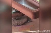 ساخت و تولید دستگاه مخمل پاش09381012250