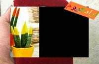دستگاه مخمل پاش و فانتاکروم در نوشهر  02156571305
