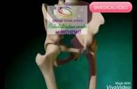 موثرترین مرکز کاردرمانی جسمی در البرز09121623463|گفتار توان گستر البرز
