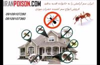 سم حشرات موذی ایران سم