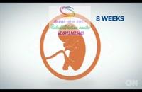 مراحل رشد نوزادان 09121623463 گفتار توان گستر البرز