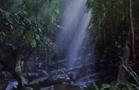 باگز: ماجراجویی در جنگل های بارانی - Bugs: A Rainforest Adventure 2003