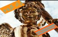 فروش فلوک پاش 09128053607