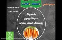 نبرد جانانه با آفات کلم و هویج با سم قارچ کش ناتیوو | Nativo 75 wg