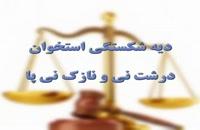 وکیل ، موضوعات حقوقی ۳