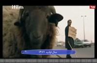 پایتخت 1 - نقی معمولی گوسفند فروش؟!!!