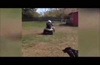 جالبترین - ویدئو : دانلود کلیپ - خنده دارترین صحنه ها