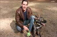 آموزش تربیت سگ _ حمله کردن