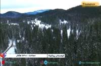 منطقه کوهستانی پوکلوکا در اسلوونی، از درختان سرسبز تا قله های برفی  - بوکینگ پرشیا