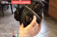 آموزش بافت موی شیک