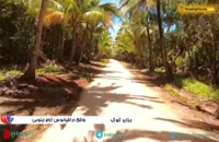 جزایر کوک، جزیره هایی زیبا در قلب اقیانوس آرام - بوکینگ پرشیا bookingpersia
