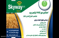 اسکای وی 285 ایکس پرو | Skyway xpro راه مطمئن درمان آفات کلزا