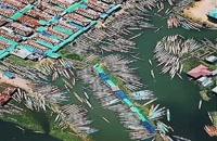 فقط ۱۰ ثانیه ( اسکلهٔ قایق های ماهیگیری _ تایلند )