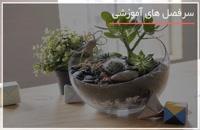 تزیین آکواریوم گیاهی زیبا برای اتاق