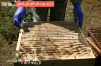 آموزش جامع زنبورداری -www.118file.com