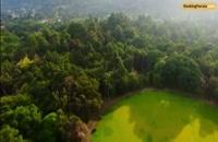 باغ سلطنتی پرادنیا،مجموعه زیبایی های طبیعت در سریلانکا - بوکینگ پرشیا