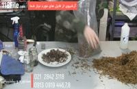 دوره آموزش پرورش قارچ در خانه