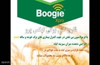 با قارچ کش بوگی ایکس پرو | Boogie xpro آفات گندم را خاک کنید