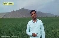 مصاحبه با کشاورز یراحی در رابطه با استفاده از محصولات فرتی نرس(پایلوت)