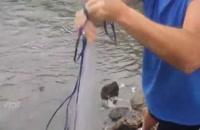 آموزش ماهیگیری - آموزشی