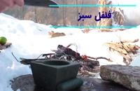 آشپزی در طبیعت: یک روز برفی و درست کردن مرغ سرخ کرده