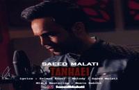Saeed Malati Tanhaei