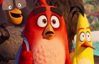دانلود انیمیشن The Angry Birds Movie 2 2019 پرندگان خشمگین 2 دوبله