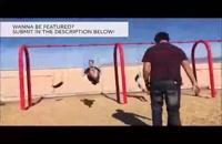 جدید - ویدئو : کلیپ های جالب : لحطه های فوق العاده دیدنی